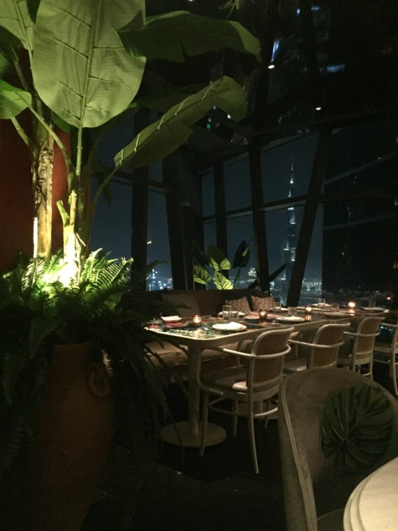 Hotel Cartagena: It's a jungle up there!