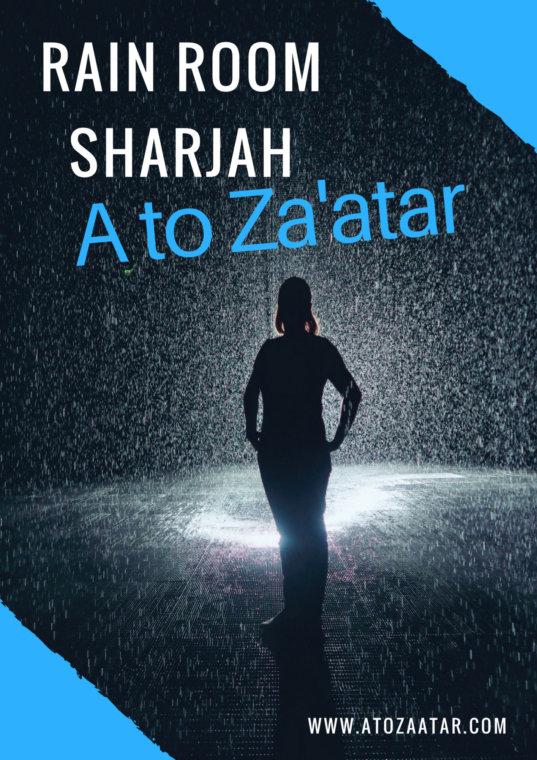 Rain Room Sharjah: Worth the visit?