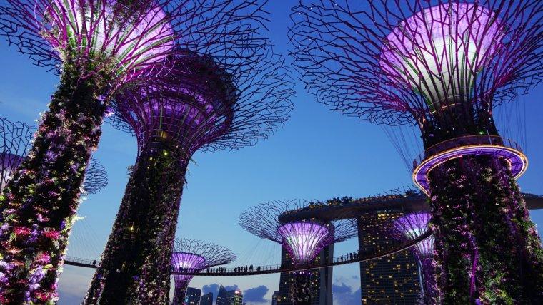 Don't Skip Singapore.